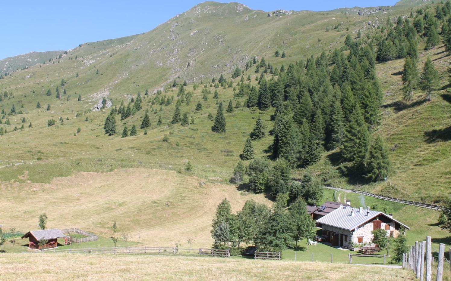 2015_Algund Malga Colo Süd Front Welsch Tirol_Gedenkkreuz Standschützen (1)